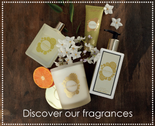 Discover Our Fragrances